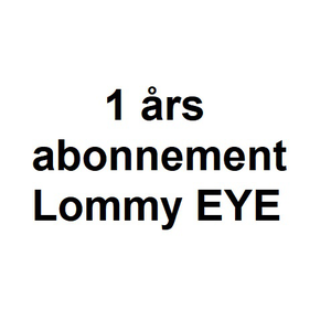 1 Års Abonnement - Lommy EYE, Rock, Container inkl SIM